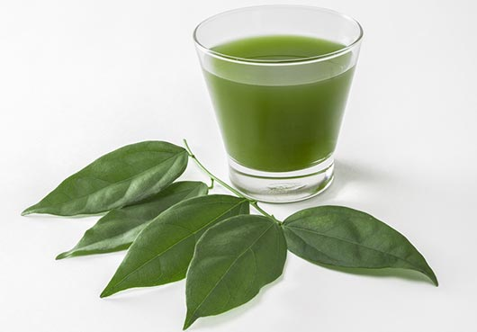 Más-allá-del-jugo-verde-10-razones-por-las-que-deberías-de-beber-clorofila-líquida-MainPhoto.jpg