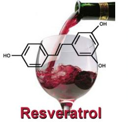 resveratrol-vino