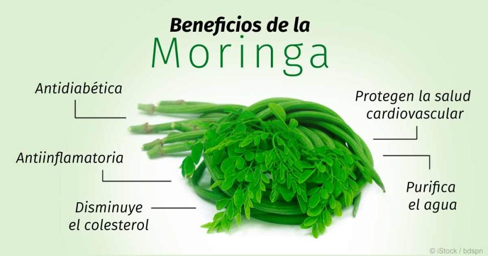beneficios-de-la-moringa-fb.jpg